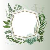 Casarse el marco herbario Fotografía de archivo libre de regalías