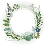 Casarse el marco herbario Imágenes de archivo libres de regalías