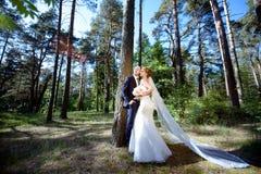 Casarse pares en la naturaleza se está abrazando Fotografía de archivo libre de regalías