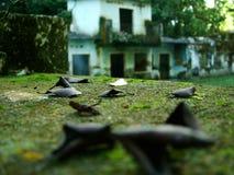Casas abandonadas fotos de archivo