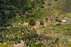 Casas abandonadas na parte inferior da cratera de Bandama, Gran Canaria fotografia de stock