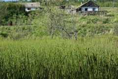 Casas abandonadas no setor privado imagens de stock