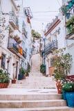 Casas brancas na rua das escadas em um monte com potenciômetros de flor fotografia de stock royalty free