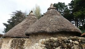 Casas celtas imagens de stock