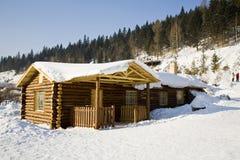 Casas cobertas na neve imagem de stock royalty free