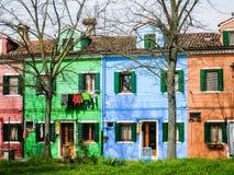 Casas coloridas, árboles deshojados, hierba verde, Burano Imagen de archivo
