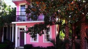 Casas coloridas maravillosas de New Orleans en la calle New Orleans Luisiana de la revista almacen de metraje de vídeo
