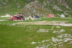 Casas coloridas norueguesas tradicionais, ilhas de Lofoten, Noruega Imagem de Stock Royalty Free
