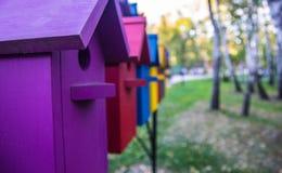 Casas coloridas para pássaros Casas coloridas para pássaros Imagem de Stock