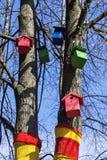Casas coloridas para pássaros na árvore Foto de Stock