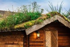 casas com um telhado do relvado foto de stock