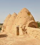 Casas da colmeia Imagem de Stock
