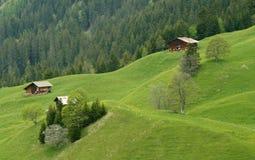 Casas da exploração agrícola na inclinação de montanha Switzerland Imagem de Stock