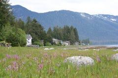 Casas da margem na ilha Alaska de Mitkof Imagens de Stock Royalty Free
