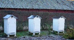 Casas de abeja Imagen de archivo libre de regalías