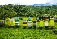 Casas de abeja coloreadas en prado en el campo de Montenegro Imagen de archivo libre de regalías