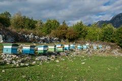 Casas de abeja en la alta montaña Fotografía de archivo libre de regalías