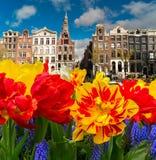 Casas de Amstardam, Países Bajos imagen de archivo libre de regalías