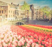 Casas de Amstardam, Países Bajos imagenes de archivo