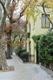 Casas de Brooklyn Fotografia de Stock