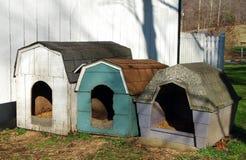 Casas de cão imagem de stock