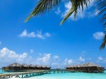 Casas de campo bonitas cercadas pelo mar Imagem de Stock Royalty Free