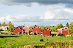 Casas de campo finlandesas fotografia de stock royalty free