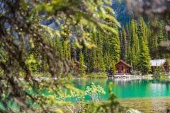 Casas de campo na fuga de caminhada de Ohara do lago no dia ensolarado na mola, Yoho, Canadá fotos de stock