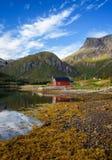 Casas de campo vermelhas tradicionais do rorbu no mar em ilhas de Lofoten em Noruega Imagens de Stock