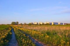 Casas de cidade novas no prado. Foto de Stock Royalty Free