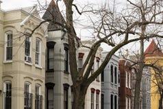 Casas de fileira em Georgetown, Washington, C.C. Fotos de Stock Royalty Free