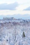 Casas de la ciudad y bosque congelado en invierno Imagenes de archivo