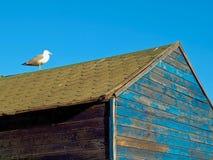 Casas de madeira azuis do fisher em Olhos de ?gua em Portugal fotografia de stock royalty free