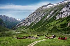 Casas de madera del tejado típico de la hierba del noruego en un panorama escandinavo soleado Foto de archivo libre de regalías