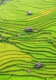 Casas de madera en el campo en Hagiang, Vietnam septentrional imagen de archivo