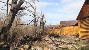 Casas de madera en la costa, lengua de territorio, la Florida, los E