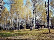 casas de madera en un bosque del abedul del otoño Fotografía de archivo