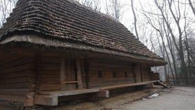 Casas de madera europeas auténticas con cubierto con paja, tejado de la paja, situado en el bosque almacen de metraje de vídeo