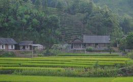 Casas de madera situadas en el pueblo de Lim Mong en Hagiang, Vietnam fotos de archivo libres de regalías