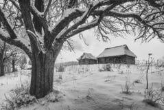 Casas de madera ucranianas en una colina coronada de nieve Rebecca 36 Fotografía de archivo