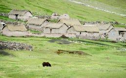 Casas de pedra quechua tradicionais foto de stock