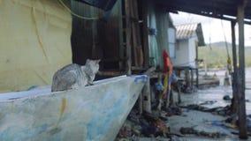 Casas de povos pobres nos precários de Ásia pelo mar filme