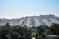 Casas de San Francisco entre o cacho fotos de stock
