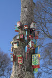 Casas del pájaro Fotos de archivo libres de regalías
