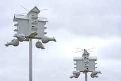 Casas del pájaro de Maritn Fotos de archivo