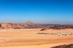 Casas distantes no deserto na peninsula do Sinai Fotos de Stock