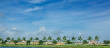 Casas e palmeiras sob o céu azul em Florida, EUA fotos de stock