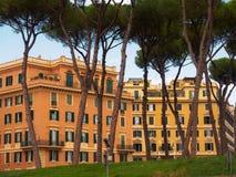 Casas e pinhos brilhantes Imagem de Stock Royalty Free
