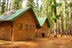 Casas ecológicas da floresta após a chuva fotografia de stock royalty free