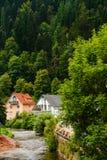 Casas en el bosque negro del schiltach, Alemania Imagen de archivo libre de regalías